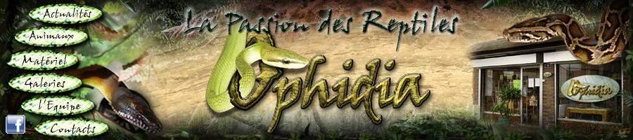 Ophidia Menu